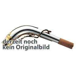 Eb-Alt Saxophon AS-710, AS-710