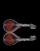 Bluegrass Instrumente
