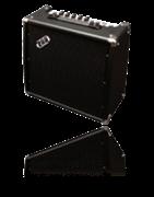 Akustikgitarren-Verstärker